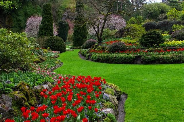加拿大Italian Garden 花园_图1-12
