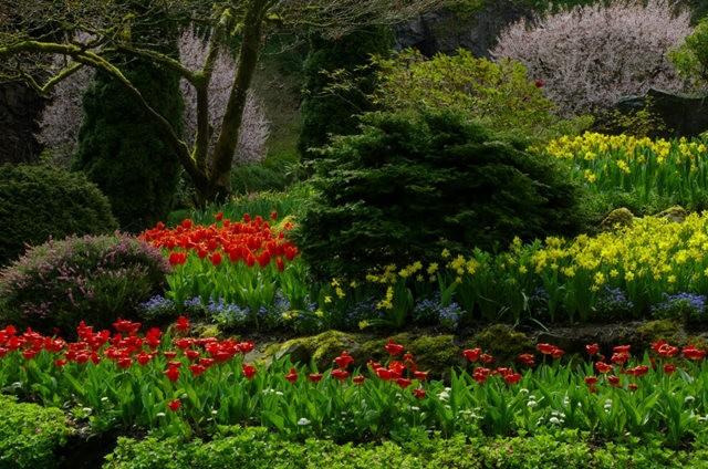 加拿大Italian Garden 花园_图1-14
