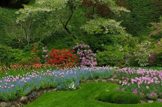 加拿大Italian Garden 花园_图1-18