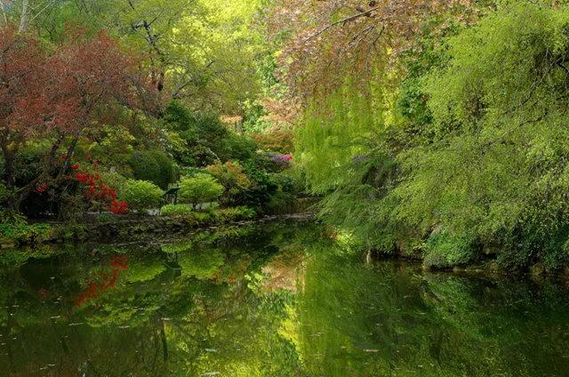加拿大Italian Garden 花园_图1-19