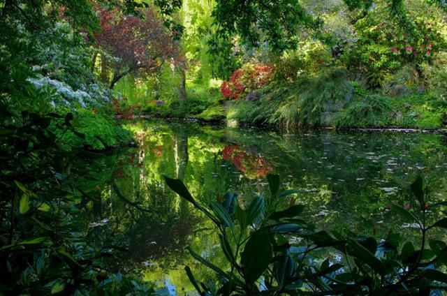 加拿大Italian Garden 花园_图1-20