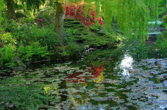 加拿大Italian Garden 花园_图1-21