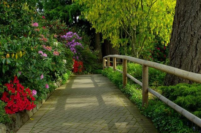 加拿大Italian Garden 花园_图1-23