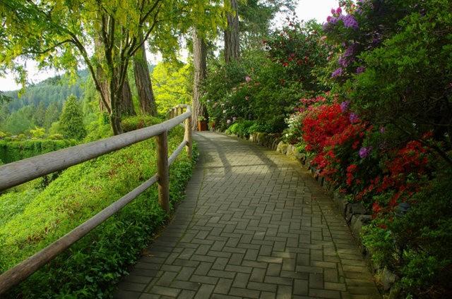加拿大Italian Garden 花园_图1-24