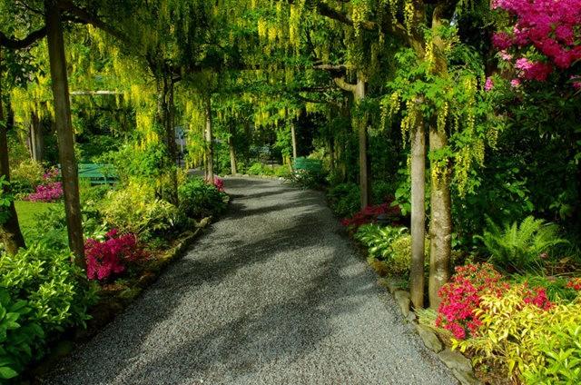 加拿大Italian Garden 花园_图1-25