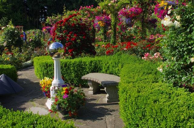 加拿大Italian Garden 花园_图1-28