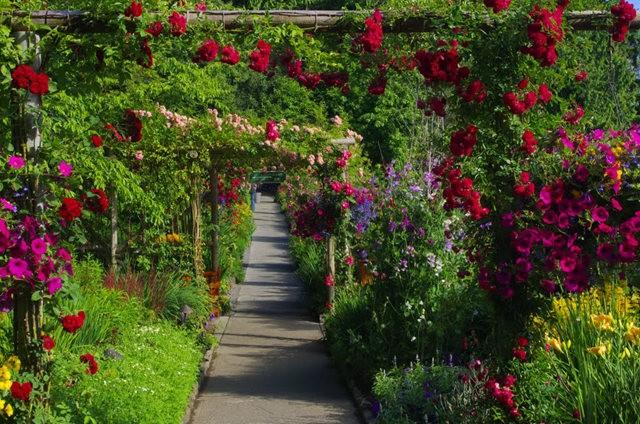 加拿大Italian Garden 花园_图1-29