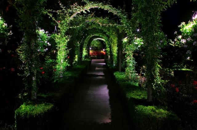 加拿大Italian Garden 花园_图1-35