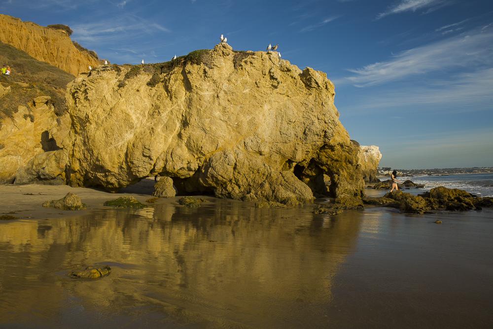 馬立布 Robert Meyer Mem State Beach_圖1-12