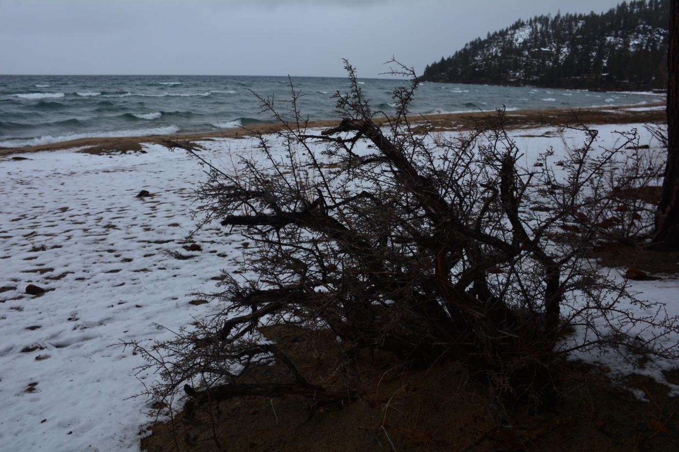 塔霍湖的冬天(二)_图1-15