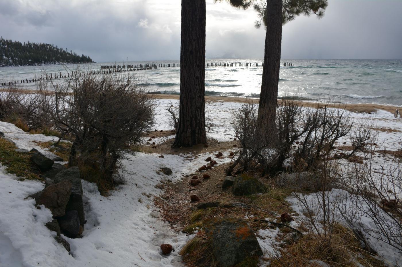 塔霍湖的冬天(二)_图1-16