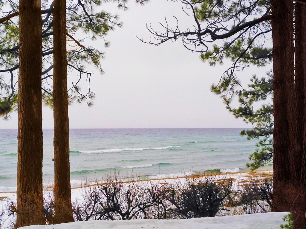 塔霍湖的冬天(二)_图1-19