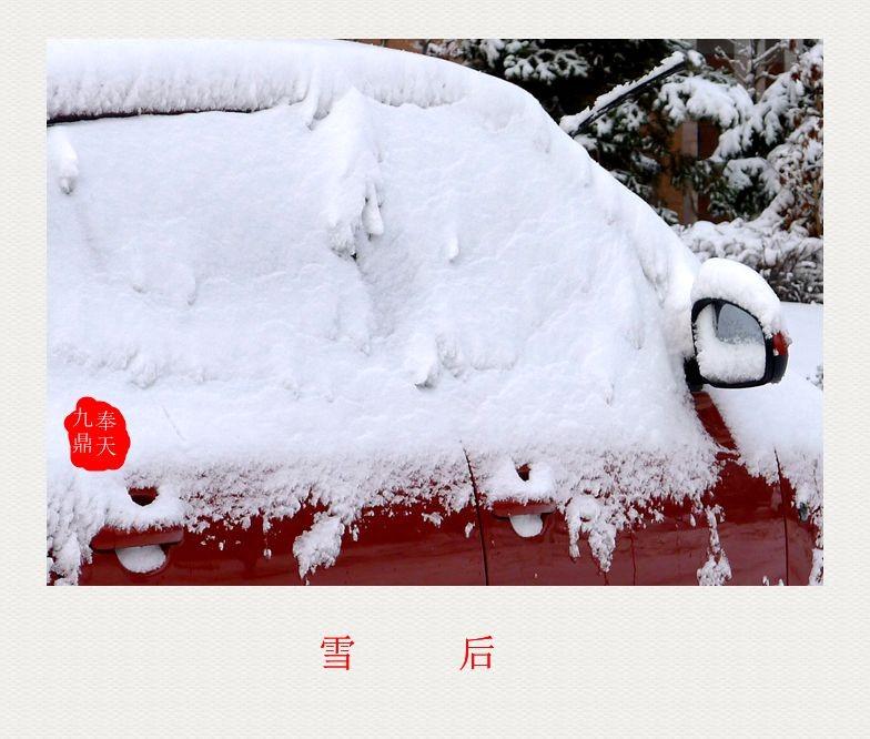 摄影    雪后_图1-4