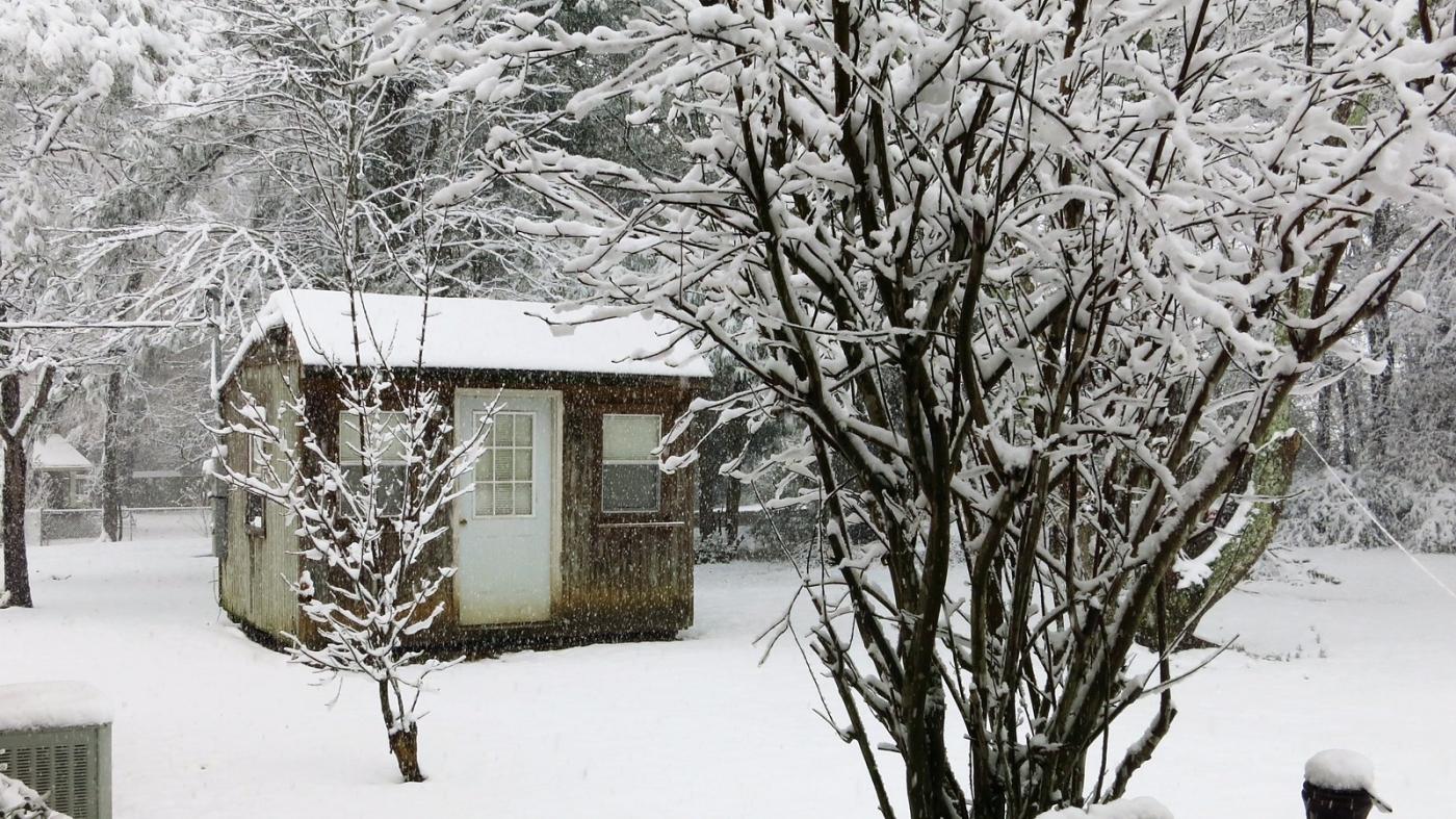 前后院的雪景_图1-1