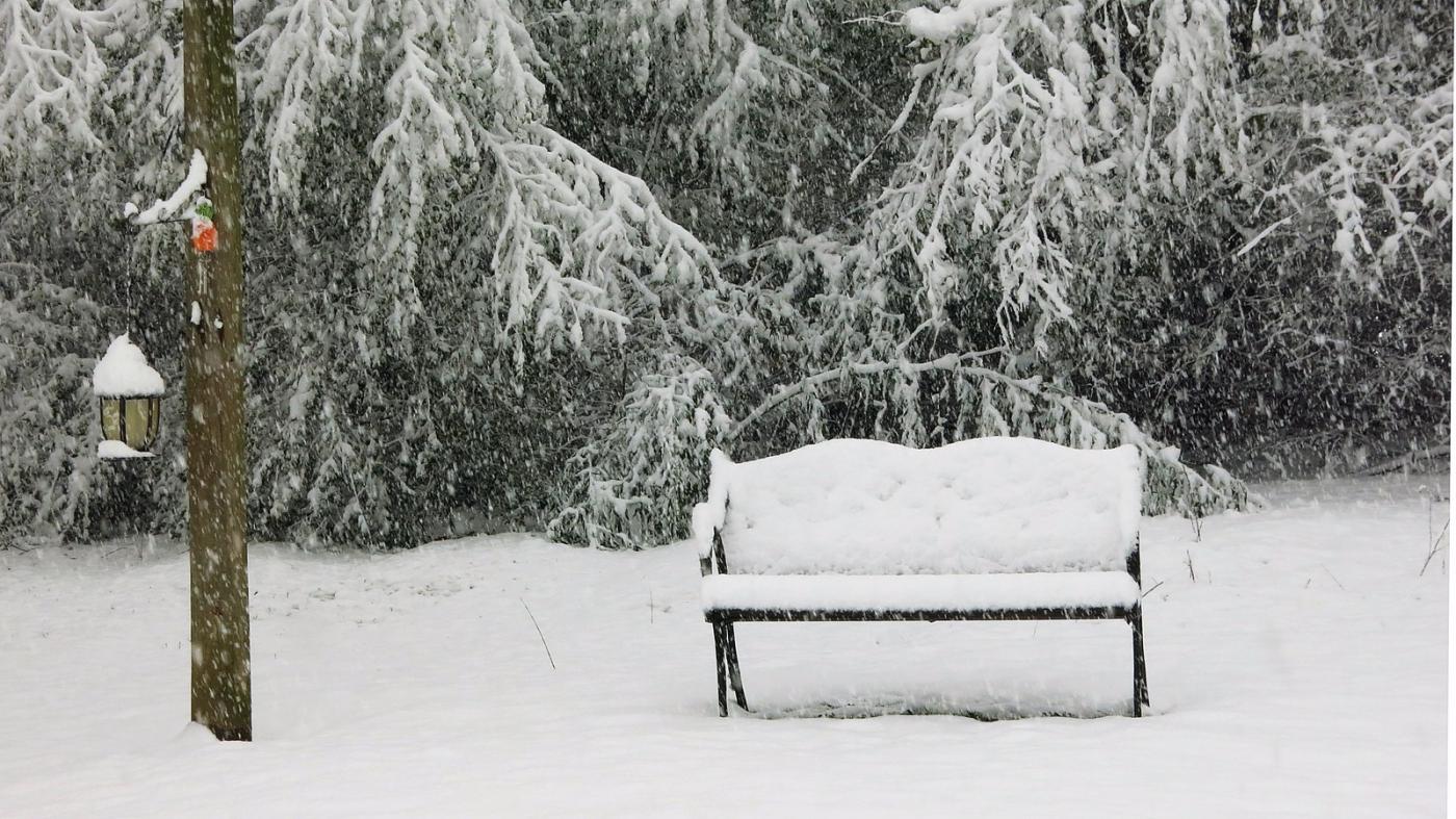 前后院的雪景_图1-2