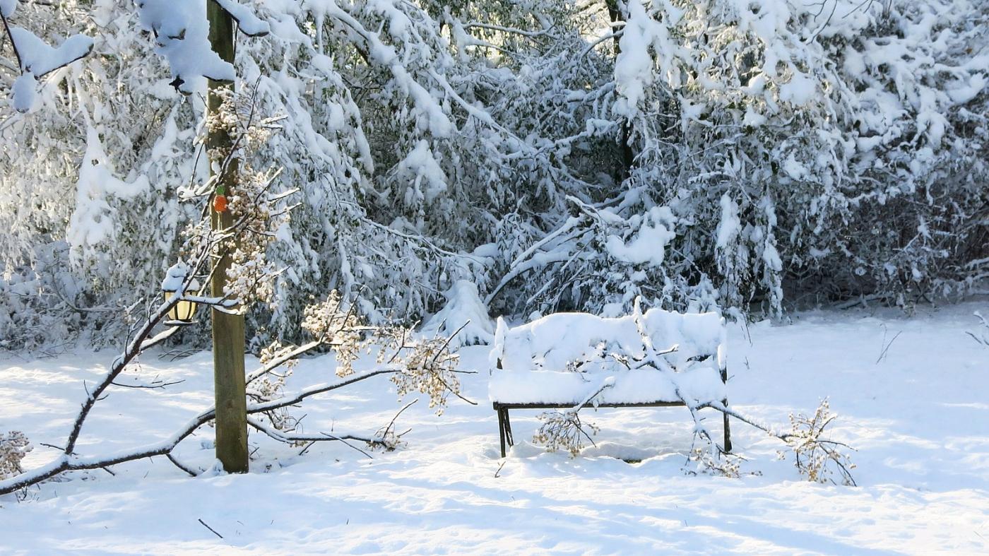 前后院的雪景_图1-3