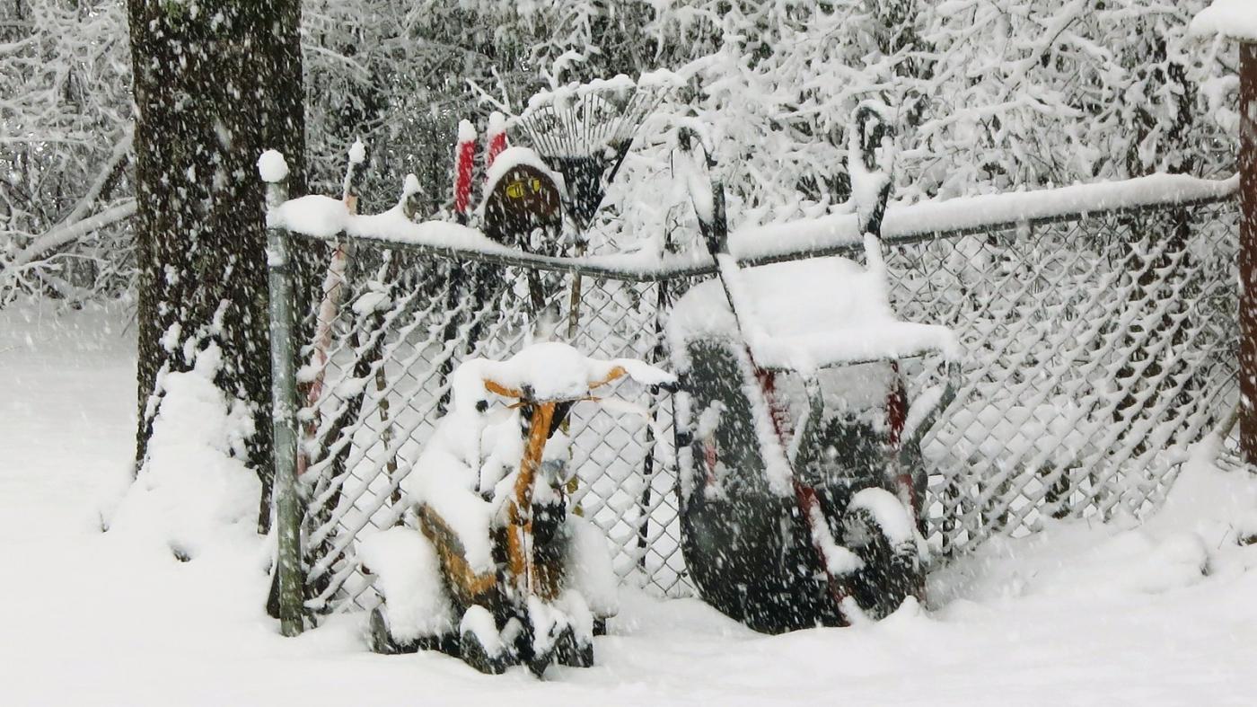 前后院的雪景_图1-8