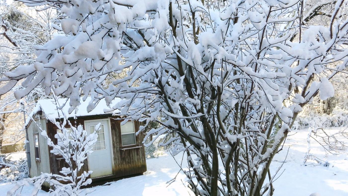 前后院的雪景_图1-9
