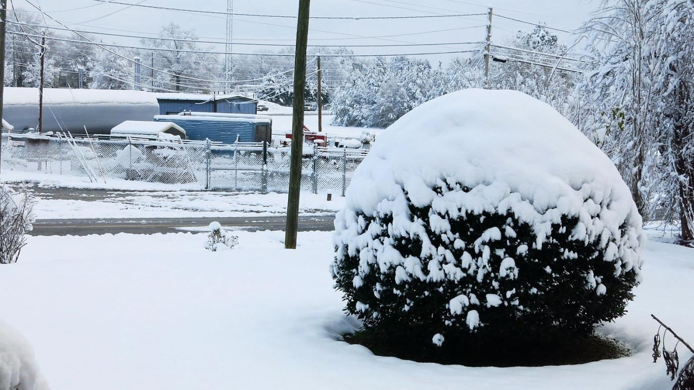 前后院的雪景_图1-15