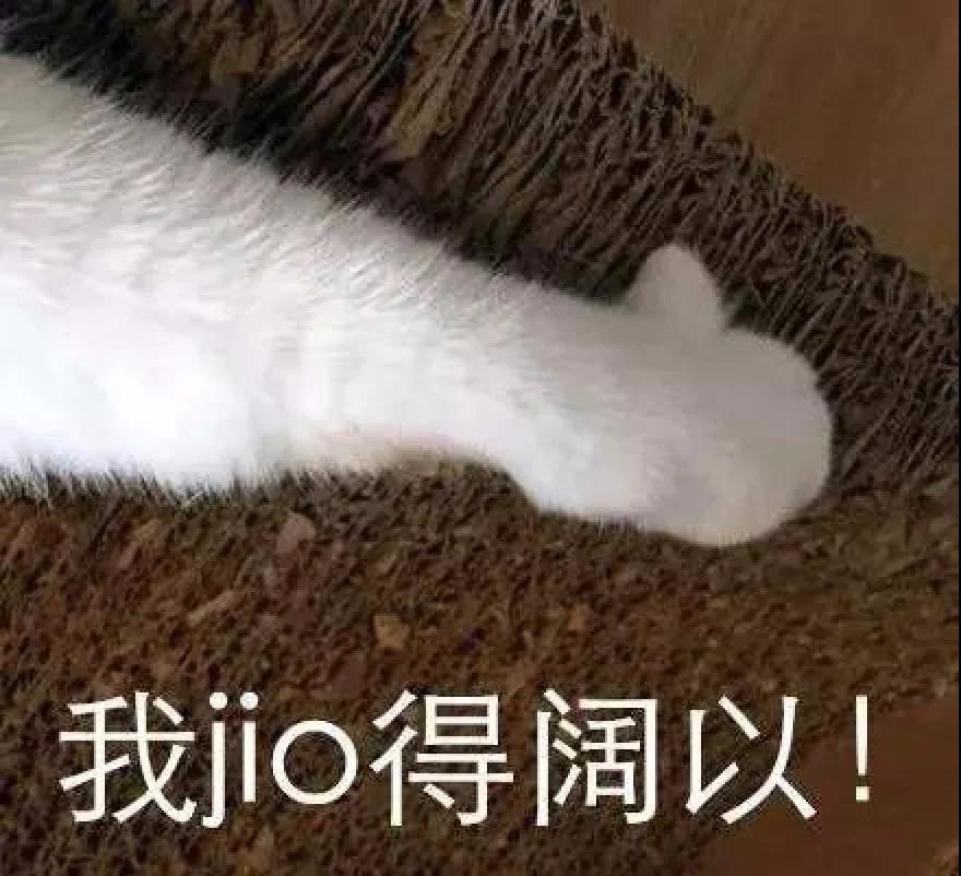 高娓娓:讲真,中国人的英语口音不是最差的!_图1-3
