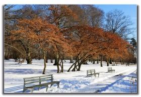 雪后初晴的凯辛娜公园景色