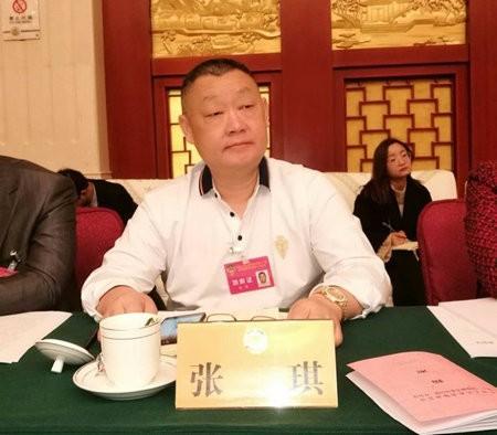 """高娓娓:安徽两会期间,海外列席代表为安徽深度参与""""一带一路""""建设建言献策 ... ... ..._图1-7"""