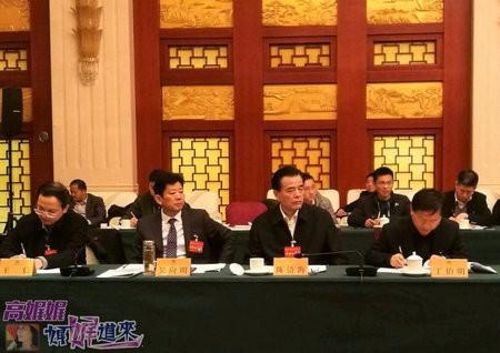 """高娓娓:安徽两会期间,海外列席代表为安徽深度参与""""一带一路""""建设建言献策 ... ... ..._图1-11"""