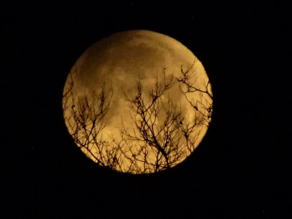 【爱摄影】今早的超级月亮兼一点点月食_图1-5