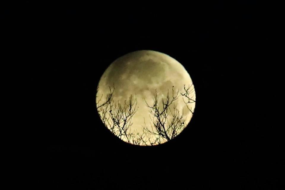 【爱摄影】今早的超级月亮兼一点点月食_图1-4