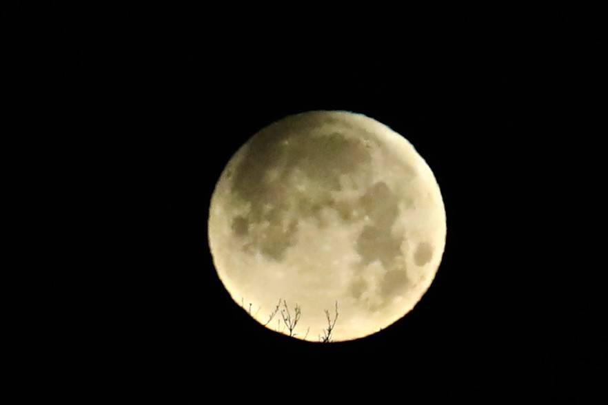 【爱摄影】今早的超级月亮兼一点点月食_图1-1