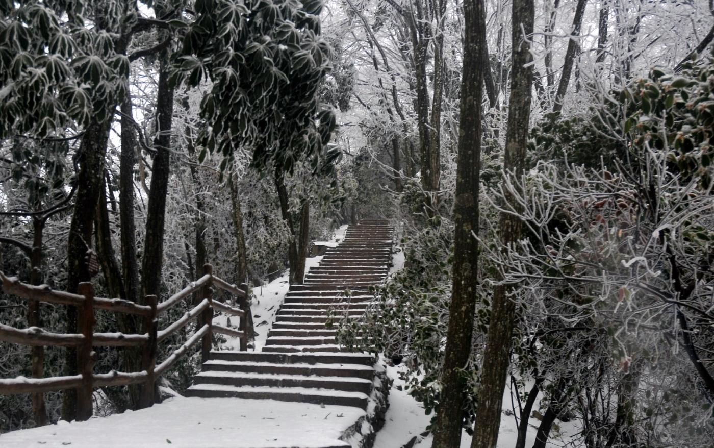 武陵源的雪(一)_图1-4