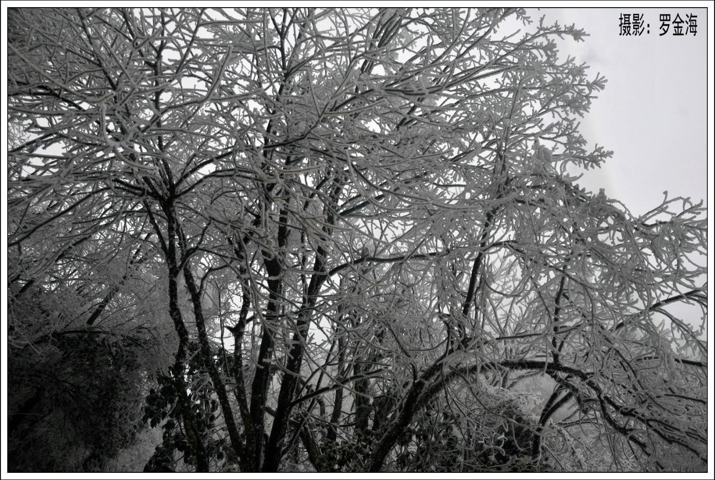 武陵源的雪(一)_图1-7