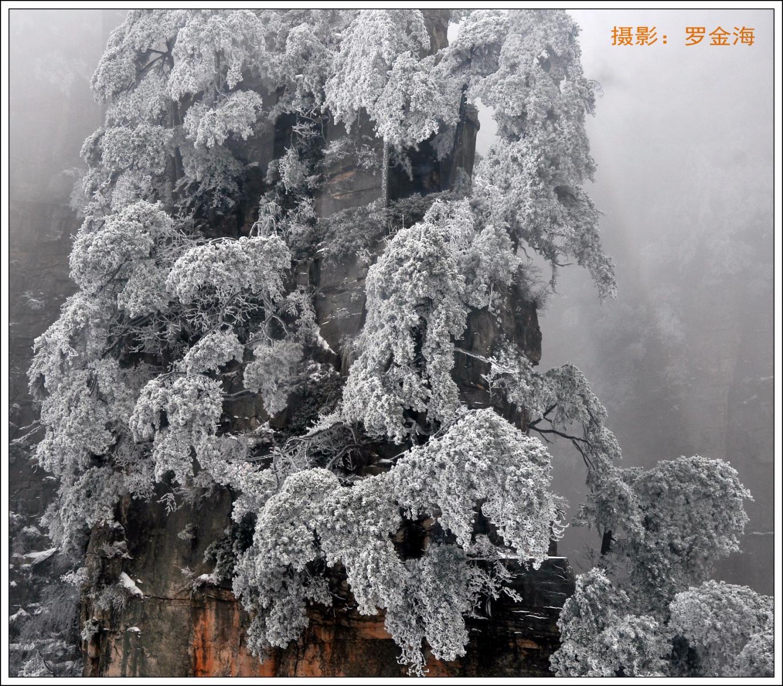 武陵源的雪(一)_图1-3