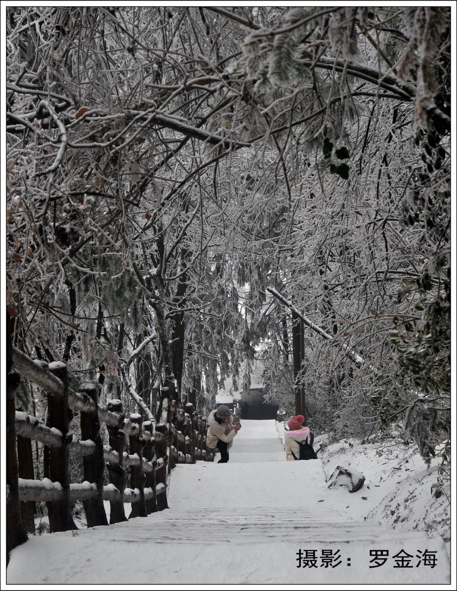 武陵源的雪(一)_图1-14