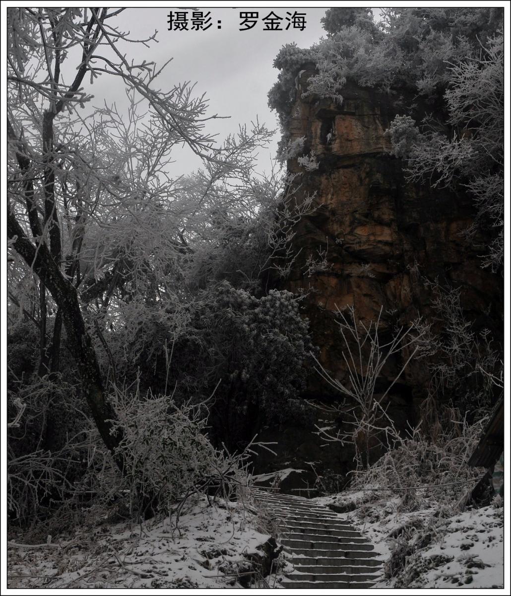 武陵源的雪(一)_图1-15