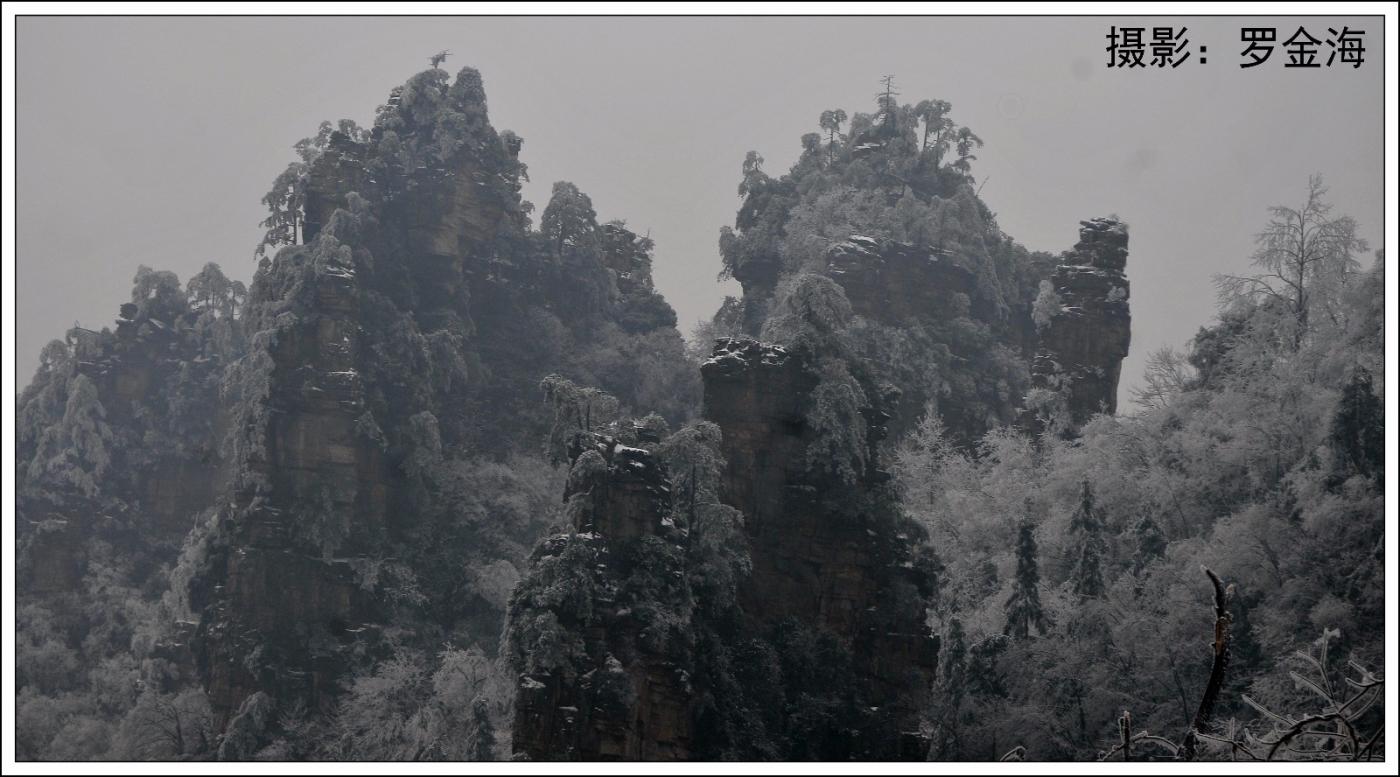 武陵源的雪(一)_图1-19