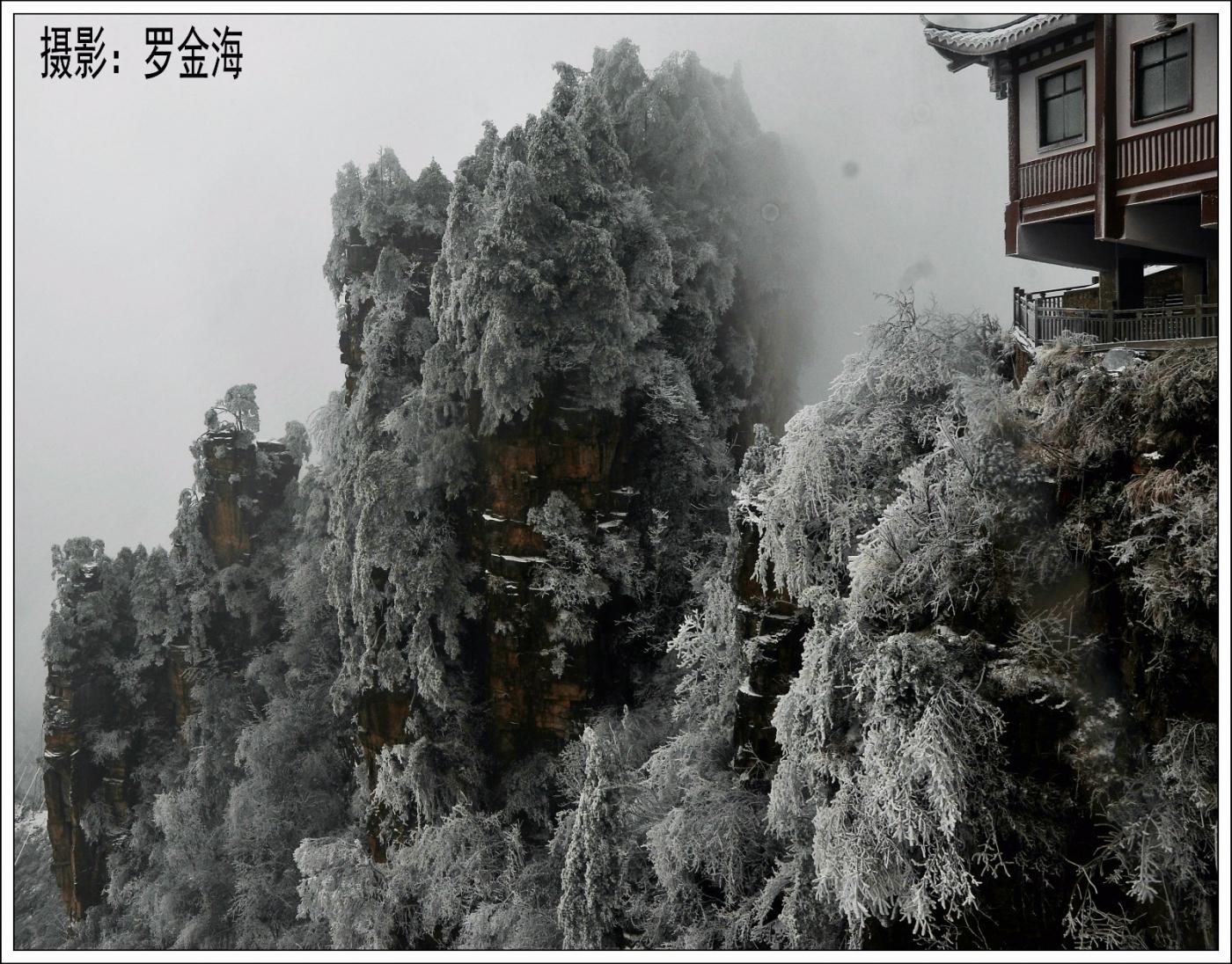 武陵源的雪(一)_图1-21