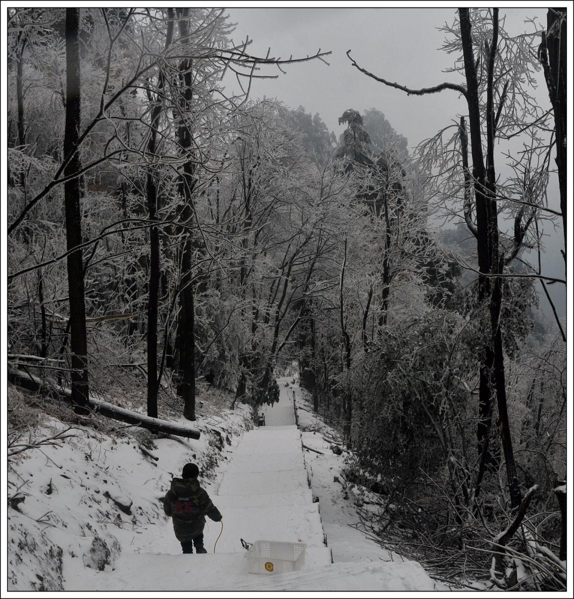 武陵源的雪(一)_图1-22