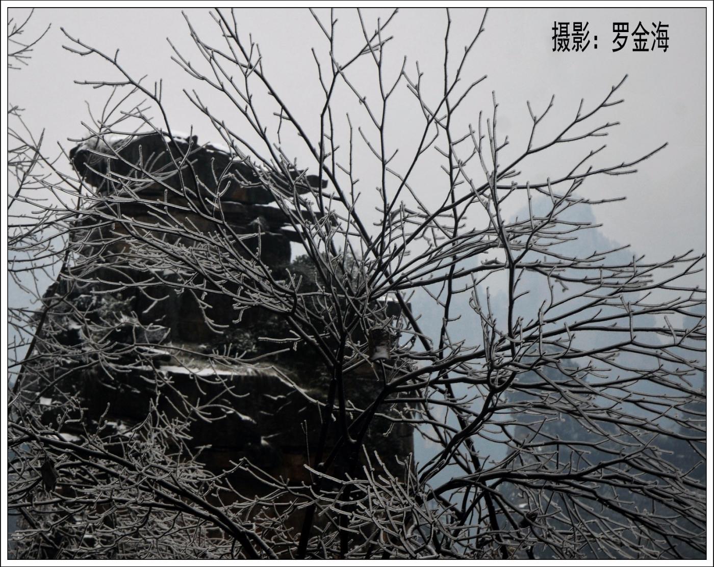 武陵源的雪(一)_图1-23