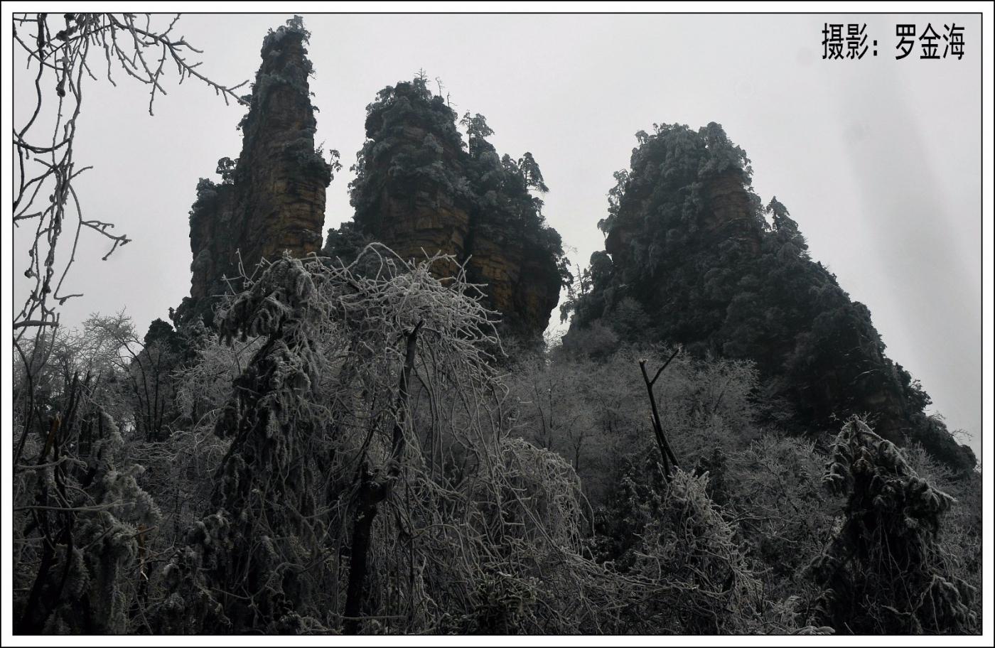 武陵源的雪(一)_图1-24