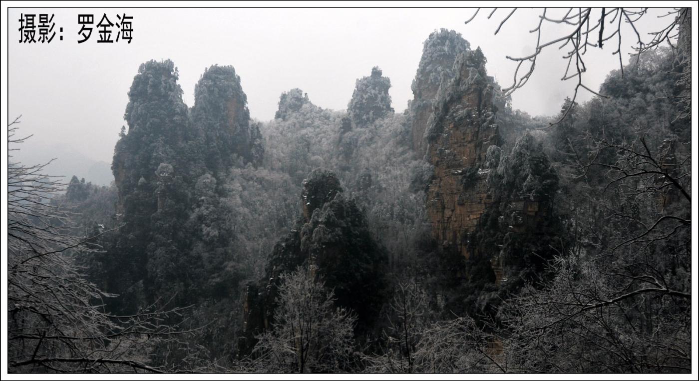 武陵源的雪(一)_图1-25