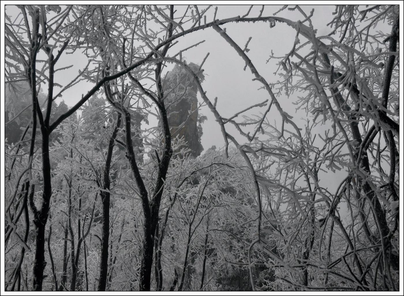 武陵源的雪(一)_图1-26