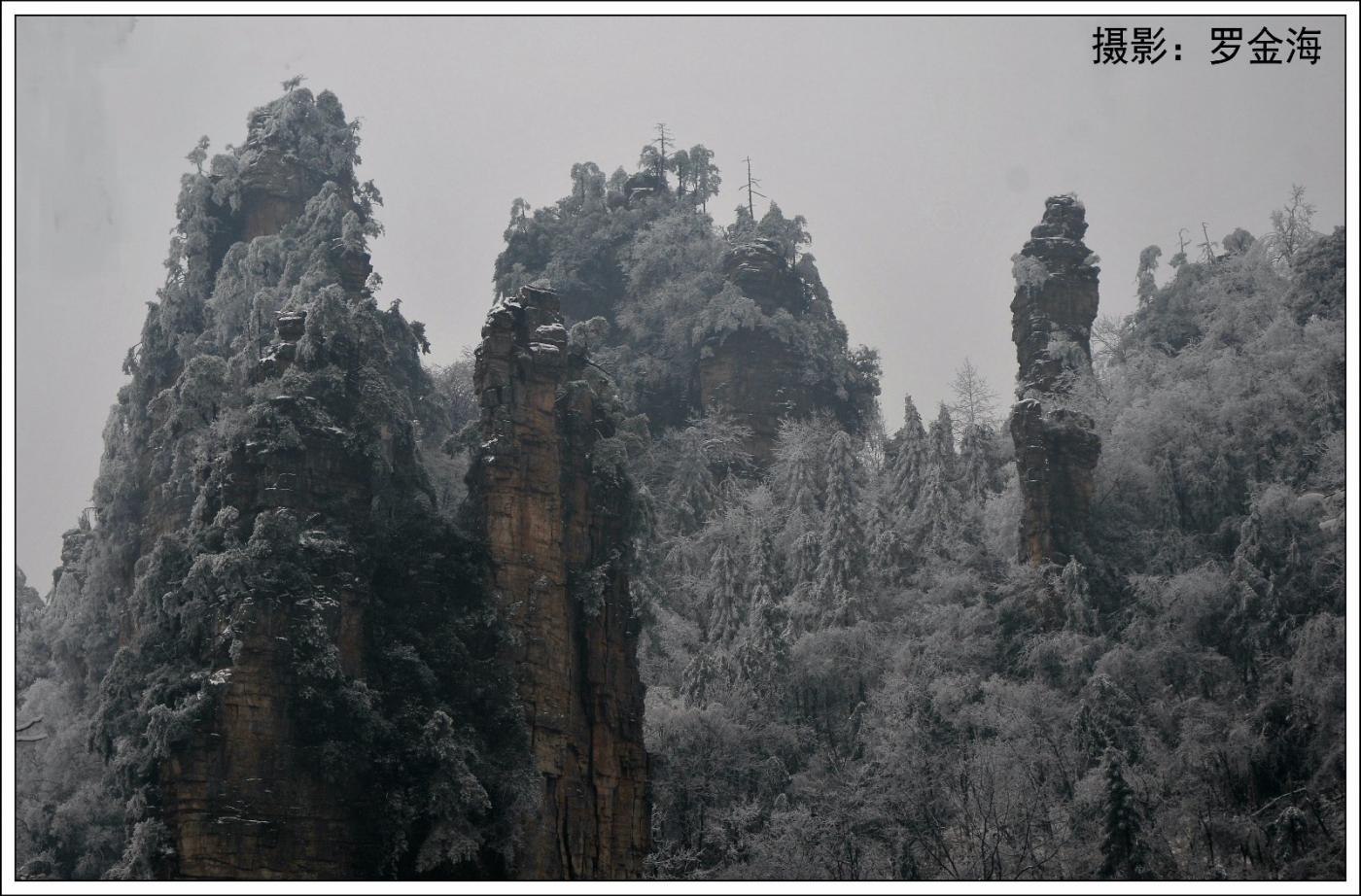武陵源的雪(一)_图1-27