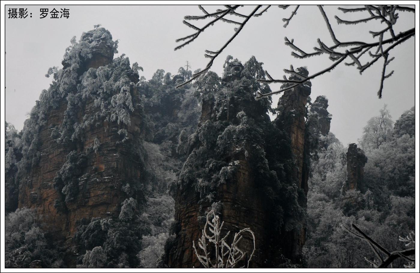 武陵源的雪(一)_图1-29