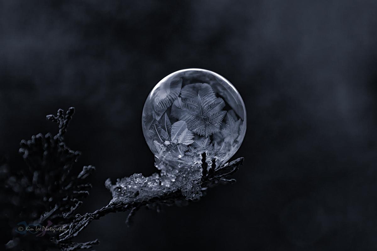 肥皂泡的冬天_图1-10