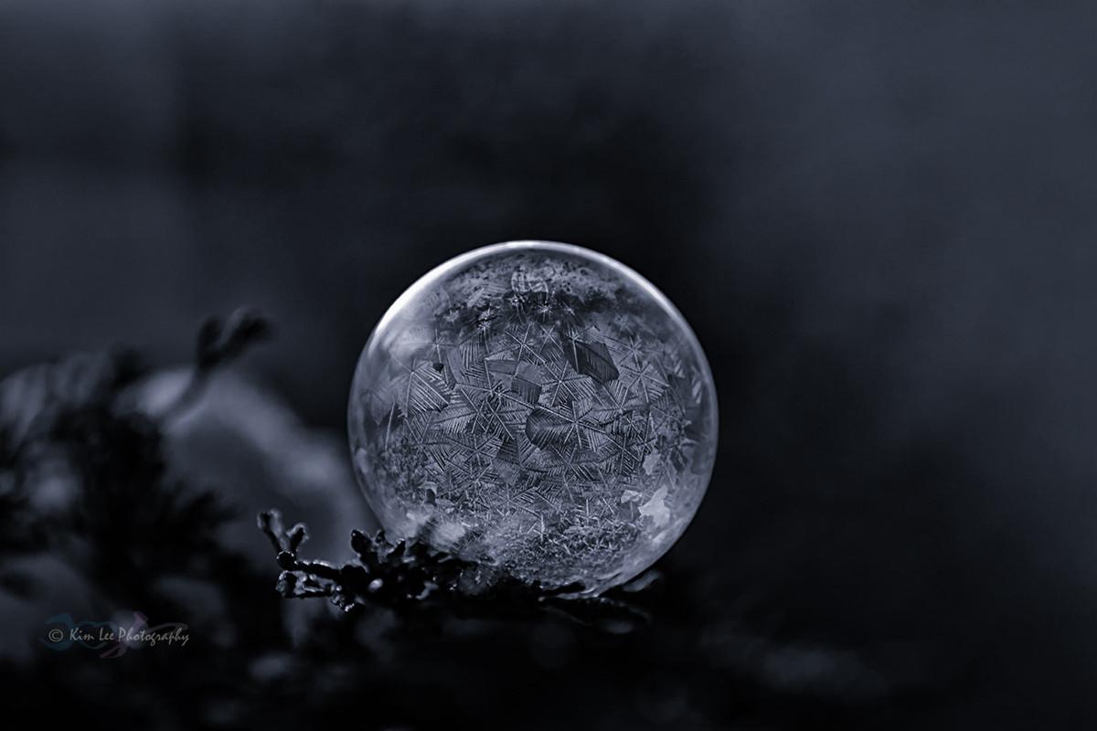 肥皂泡的冬天_图1-8
