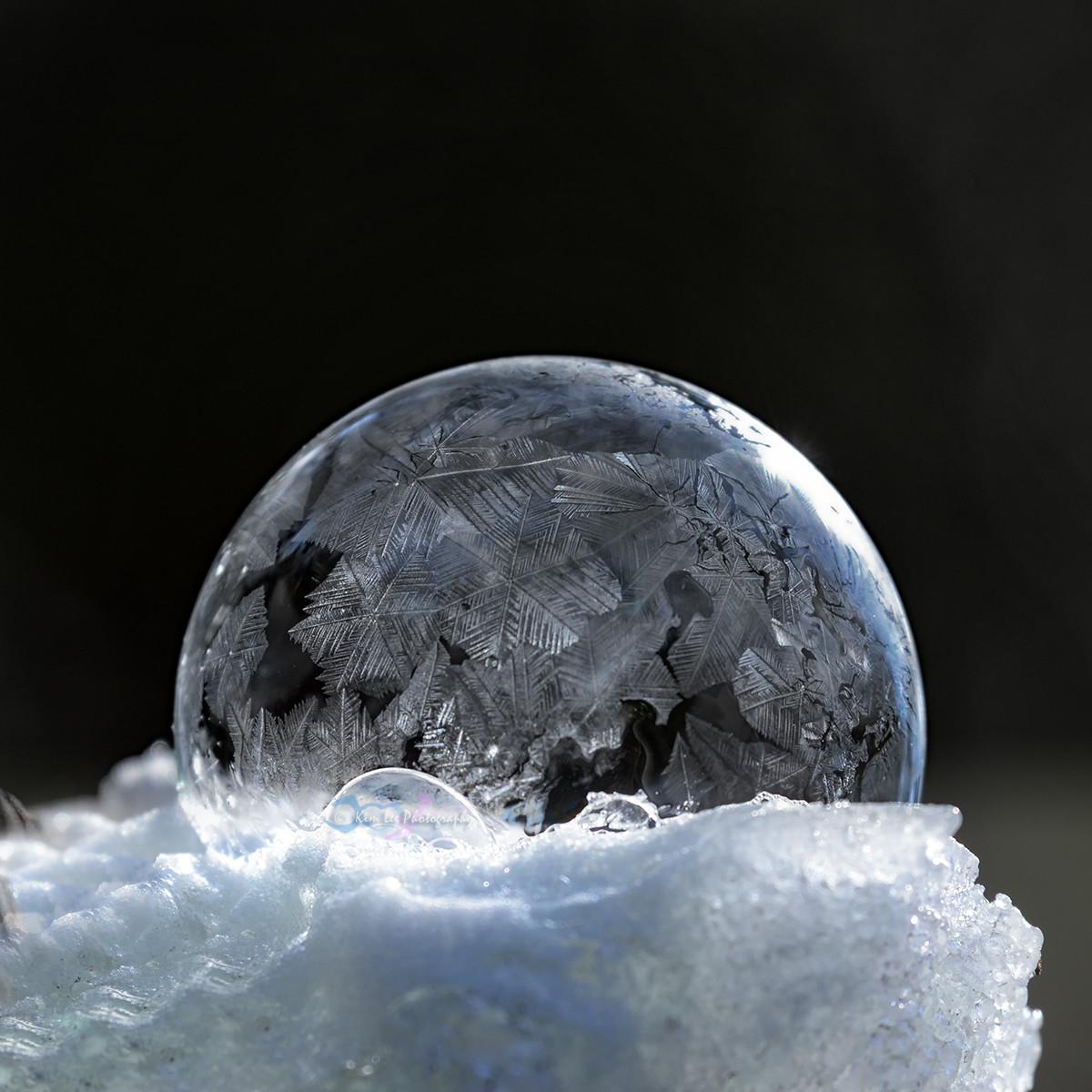 肥皂泡的冬天_图1-12