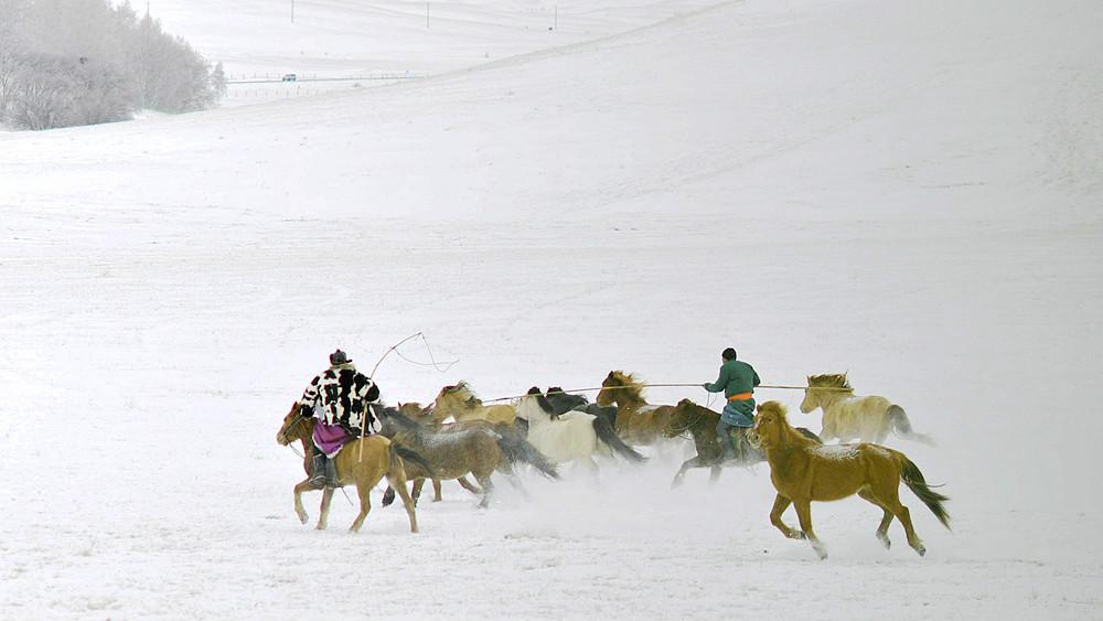 乌兰布统行摄---套马的汉子_图1-3