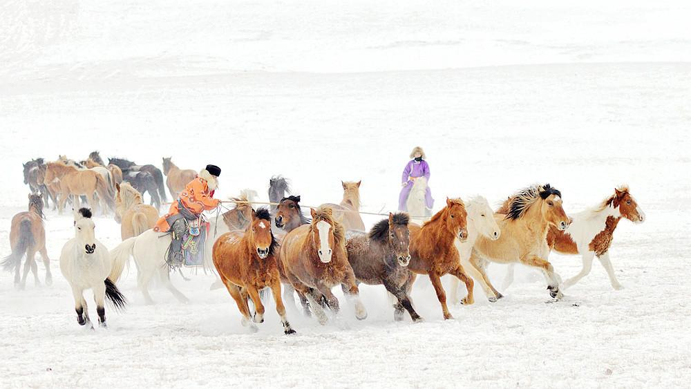 乌兰布统行摄---套马的汉子_图1-4