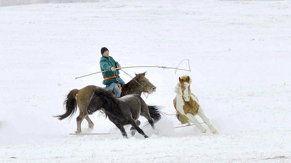 乌兰布统行摄---套马的汉子_图1-12